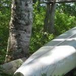 5th Machias Lake, TWP # 36, Washington County, log cabin, sand beach