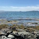 Oceanfront Cape
