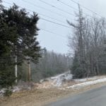 100 wooded acres