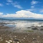 Grand Marsh Bay